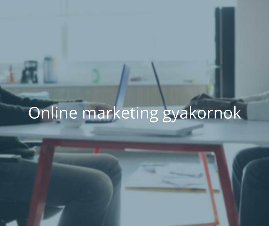 Junior online marketinges (1)